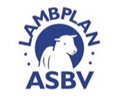 Lamb Plan